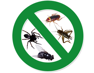 Joe Blue Pest Control Ants Bed Bugs Events Mice Rats Roaches