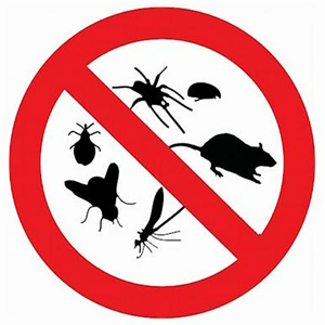 In Manhattan, NY (New York City), Pests Like Bed Bugs, Roaches, Termites,  Ants, Rats, Mice, Spiders, Centipedes, Millipedes, Gnats, Mites, Fleas, ...